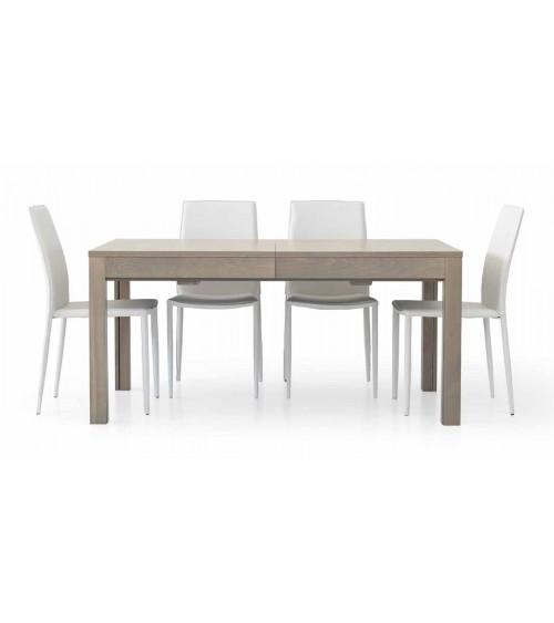 Tavolo rettangolare allungabile rovere grigio L. 160 P. 90 + 4 allunghe 43 - T560 - 1 - Tavoli